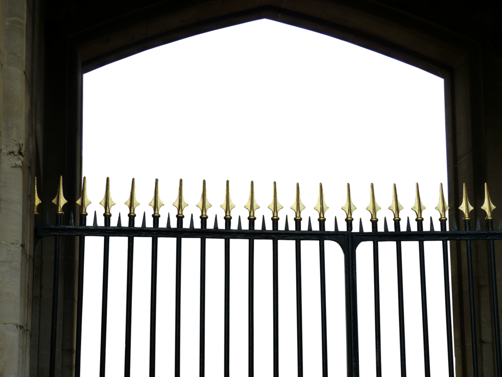 Iron wrought black gate
